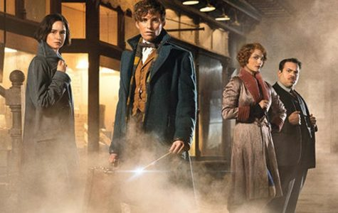 J.K. Rowling's Wizarding World continues onscreen in 2016