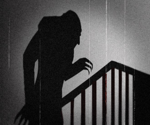 Nosferatu (1922) photo courtesy of Izzy Filippini