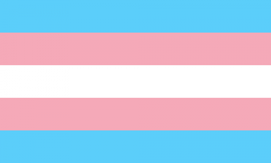 Trans+women+who+have+transformed+history