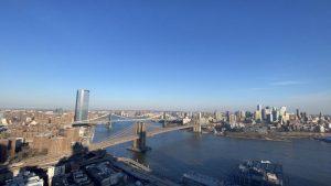 New York City's environmental progress of the East River amid dolphin sighting